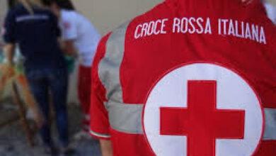 Photo of Associazione della Croce Rossa Italiana – Unità di Raccolta Sangue L'Aquila